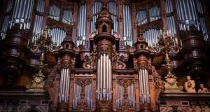Возникновение органа